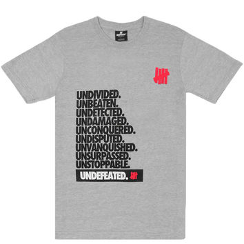 Undefeated - Undivided T-Shirt (Grey Heather)