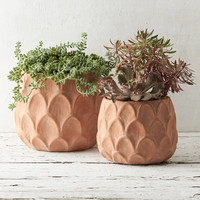 Arches Terracotta Pot, 8-10