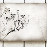 Canvas Wall Art, Neutral Home Decor, Ready To Hang, Large Wall Art, Nature Print, Brown, White, Woodland, Autumn Foliage - The Reflection