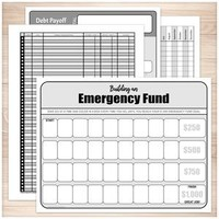 Financial BUNDLE: Bill Payment, Transaction Register, Emergency Fund, Debt Payoff - Printable