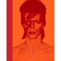 David Bowie Is / SidMashburn.com