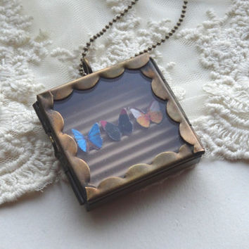 1- Butterfly Specimen Necklace Insect Under Glass Specimen Shadow Box OOAK Unique Mini Butterflies Glass Locket PeculiarCollective