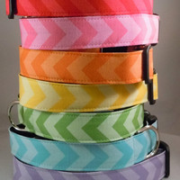 Dog Collar - Dog , Martingale or Cat Collar - All Sizes - Chevron