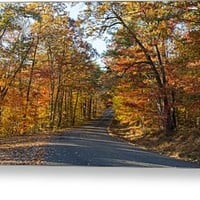 Late Afternoon on the Little River Canyon Parkway Greeting Card for Sale by John Bailey
