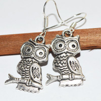 Owl charm earrings metal casual boho chic adorable jewelry