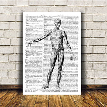Anatomy art Human body poster Modern decor Dictionary print RTA94