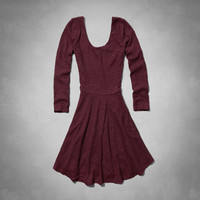 Brieann Lace Skater Dress