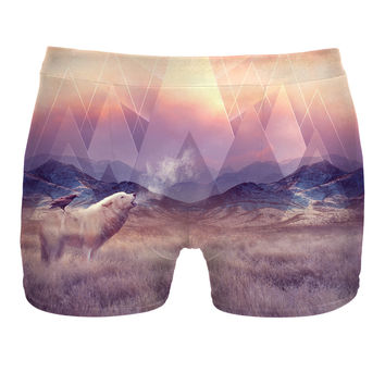 In Search Of Solace Boxer Briefs