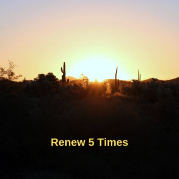 A Teeny Tiny Reminder: renew