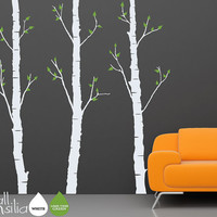 Birch Trees Wall Decal by WallConsilia
