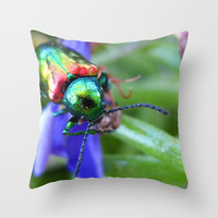 Beetle Pillow, Insect Pillow, Photo Pillow Case, Rainbow Pillowcase, Macro Entomology Pillow, Canvas Throw Pillow, 16X16 Pillow Cover, 18X18