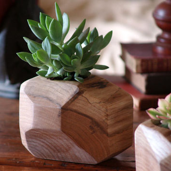 Best cactus wood products on wanelo for Wooden cactus planter