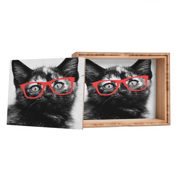 Allyson Johnson Sassy Kitten Storage Box