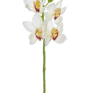 "Cream and Burgundy Artificial Cymbidium Orchid - 19"" Tall"