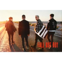 Fall Out Boy Domestic Poster