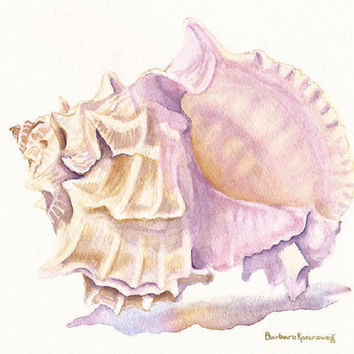 Murex Seashell Beach Art Print Watercolor Painting of Original, Barbara Rosenzweig, Beach Shell Seashore Florida Vacation Home Decor Gift