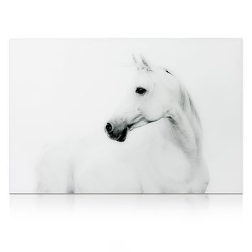 Blanco Stallion Horse ~ Tempered Art Glass
