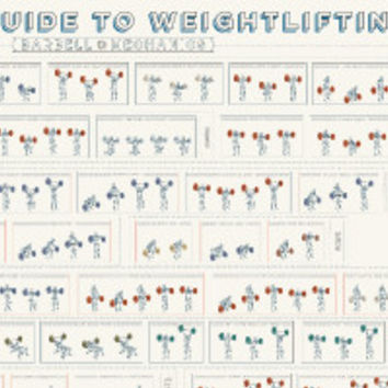A Visual Guide to Weightlifting: Barbell Mechanics