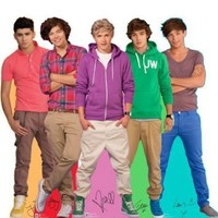 AG1D One Direction Cardboard Cutout Standee Standup Poster Harry Niall Louis Liam Zayne