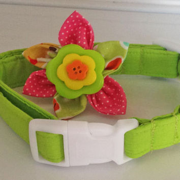 Lime Green Collar with Pink Flower for Female Dog or Cat
