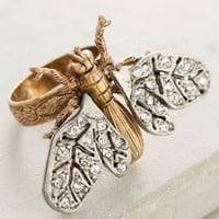 Miss Ellie Winged Beetle Ring in Gold Size: One Size Rings
