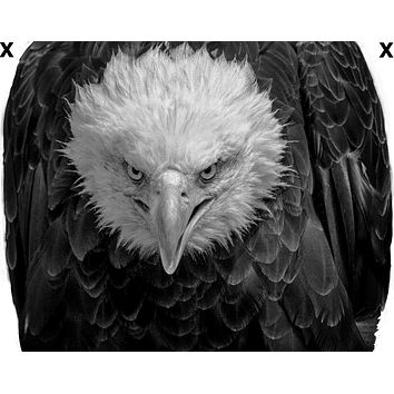 Angry north American bald eagle- Airbrush Stencil