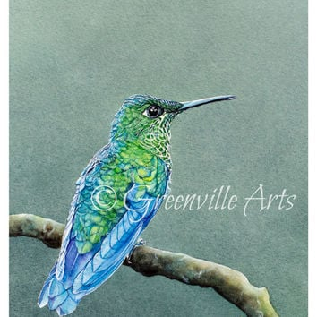 "Hummingbird Print 5x7 of watercolor painting 5"" by 7"""