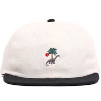 Prehistoric 6-Panel Strapback Polo Hat Bone / Black