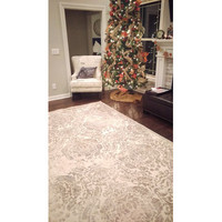 Nourison Graphic Illusions Ivory Area Rug