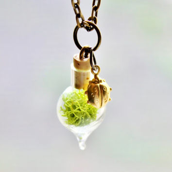 Tiny Moss Terrarium Necklace with Ladybug, Nature Jewelry, Mini Glass Bottle, Lady Bug Jewelry, Bronze Chain, Nature Gift