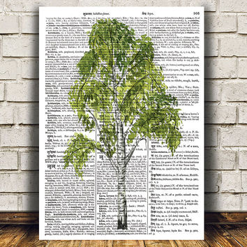 Birch tree print Tree art Watercolor poster Dictionary print RTA1365