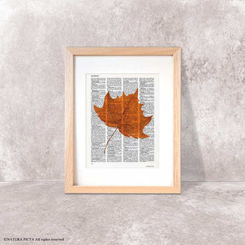 Maple leaf print-Fall decor-Thanksgiving print-rustic print-maple leaf dictionary-botanical print-leaf book art-home decor-NATURAPICTA-DP111