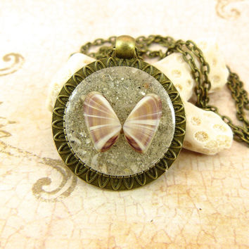 Coquina Seashell Pendant Necklace with Sand and Shell from Sanibel Florida