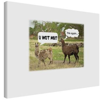 Angry Standing Llamas Printed Canvas Art Landscape - Choose Size by TooLoud