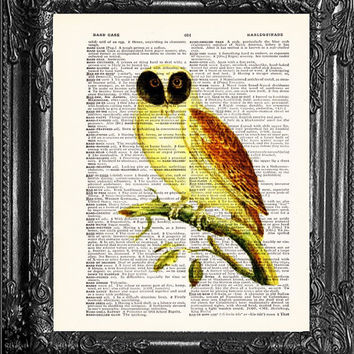 Masked Barn Owl-Dictionary Print Book Print Page Art-Upcycled Antique Book Page-Print On Dictionary Book Page-Upcycled Book Page