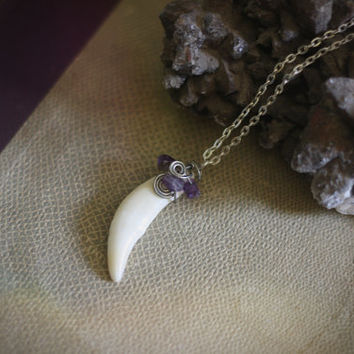 dawning // amethyst wrapped coyote fang pendant
