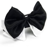 Platinum Pets Formal Dog Bow Tie and Collar, 14 to 15-Inch, White