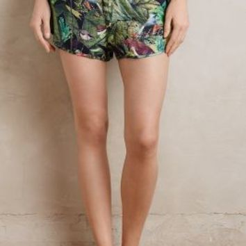 Touche Rainforest Shorts in Green Motif Size: