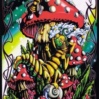 Alice in Wonderland Caterpillar Black Light Poster 23x35