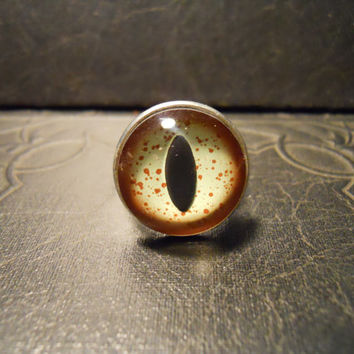 Alligator Reptile Eye Taxidermy Glass Eye Ring