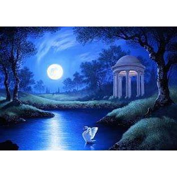 5D Diamond Painting Swan in the Moonlight Kit
