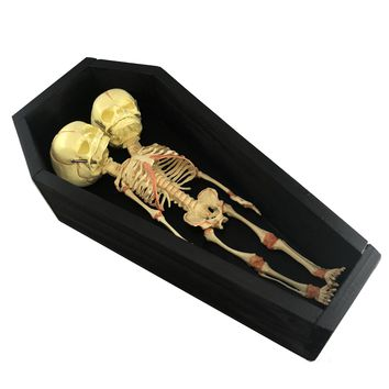 Deluxe Conjoined Siamese Twin in Coffin