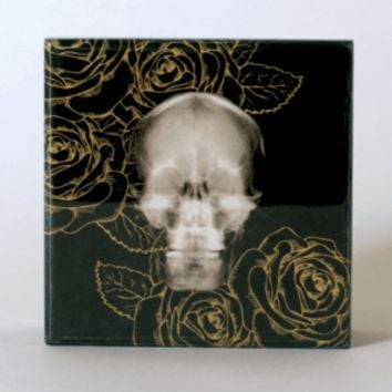 The Oracles Printed Skull Lacquer Jewelry Box