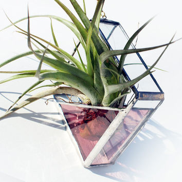 Stained Glass Air Plant Holder  Sconce  Small  Simple by LAGlass