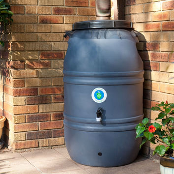 60-Gallon HDPE Food Grade Plastic Rain Barrel With Screw On Cover