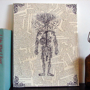 Prints on Canvas Vintage Anatomical Drawing Literary by Stoic