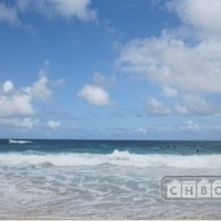 Fully furnished 1br unit, near the beach - Furnished Condo for Rent in Honolulu, Hawaii, United States