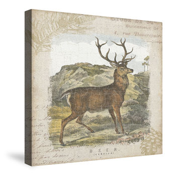 Woodland Stag I Canvas Wall Art