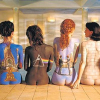 Pink Floyd (Back Catalogue) Music Poster Print - 36x24