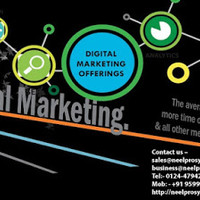 Neelpro system is one of the leading Digital Marketing Company